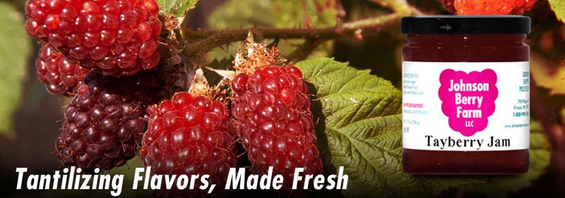 Home - Johnson Berry Farm